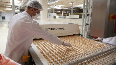 mars struno шоколадна фабрика cadde осветление